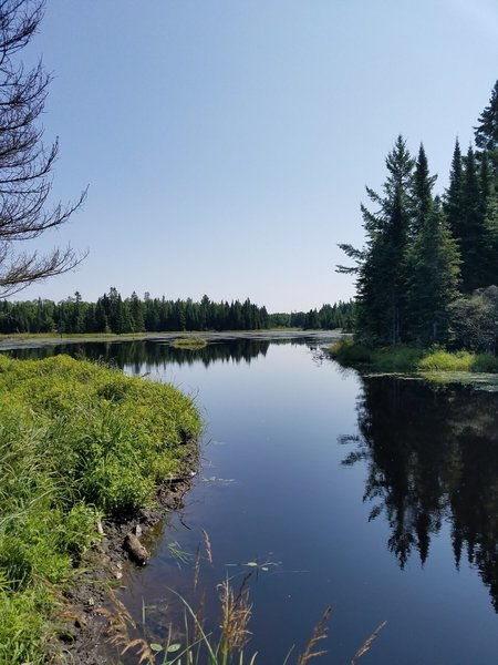 Beautiful view of the beaver pond you pass along the way.