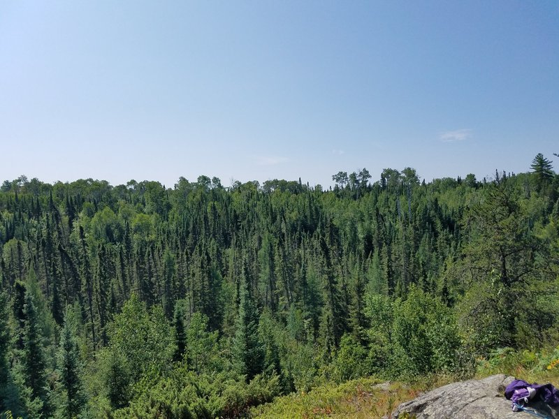 View of the Kabetogama Forrest from the ridge.