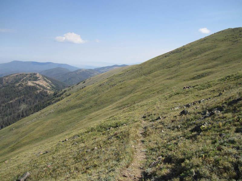 The faint Blue Ridge Trail.