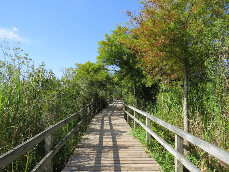 Second boardwalk