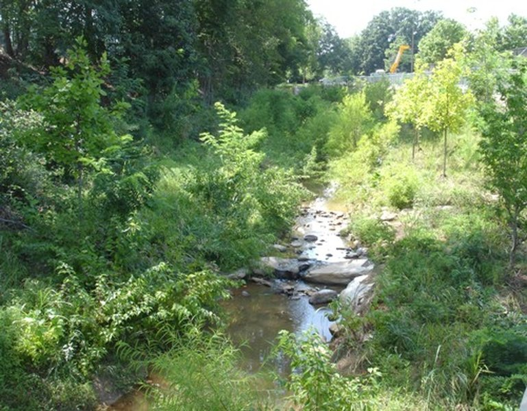 View of a creek