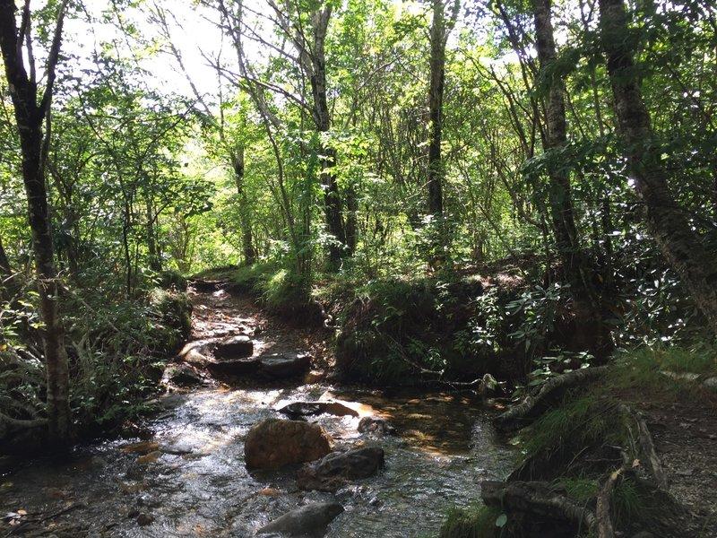 Small creek crossing