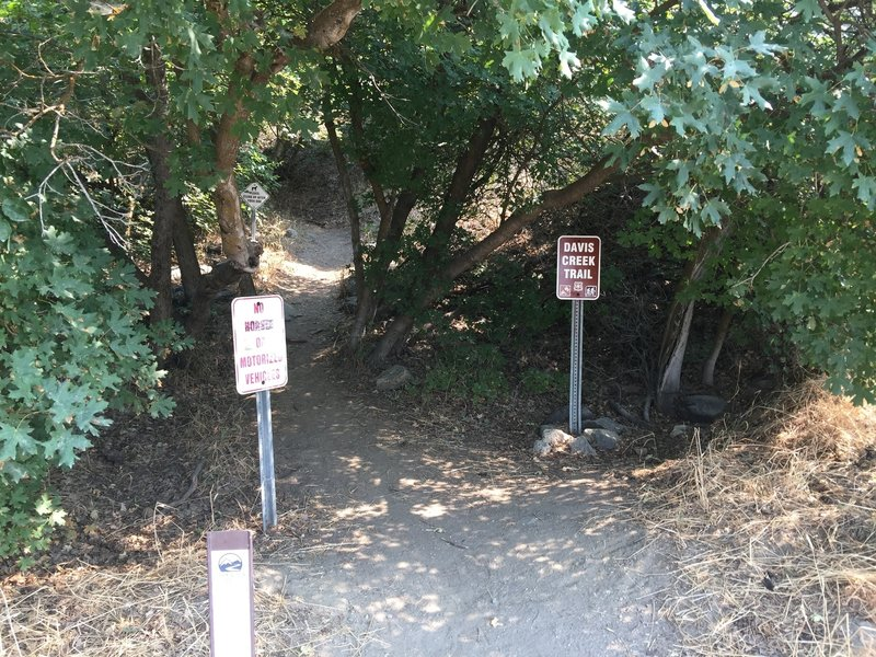 Here's the start of the trail. Unfortunately, you can no longer park here. I used to park here all the time.