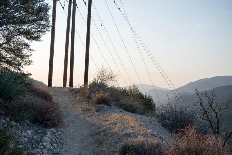 Dawn light on the Strawberry Peak trail