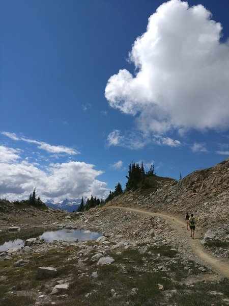 Flowy alpine trails along the top of the loop