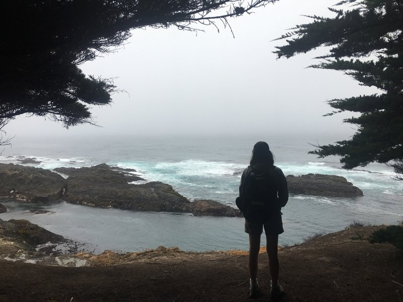 From the Spring Ranch trail south of Mendocino.