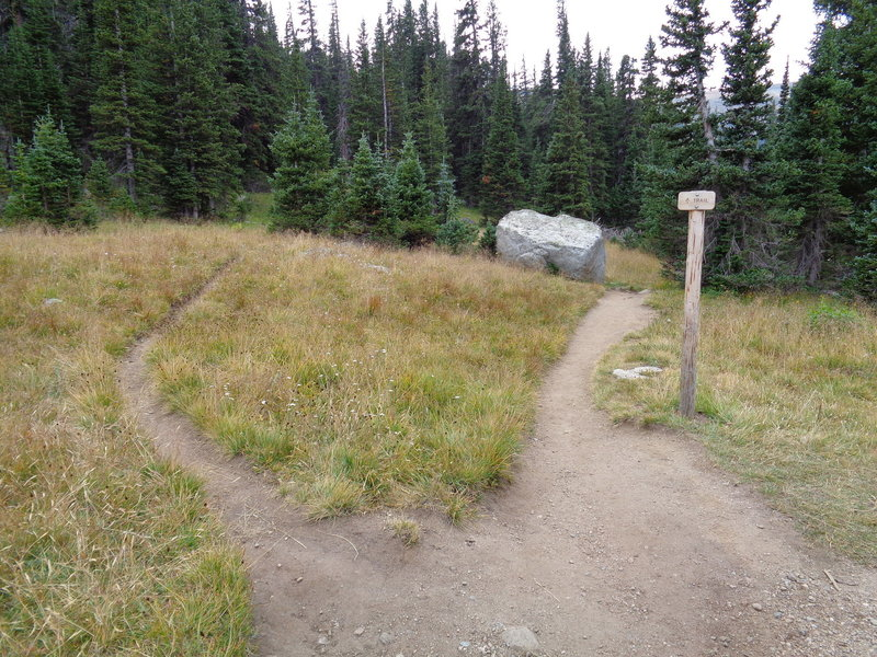 The trail up Niwot Spur