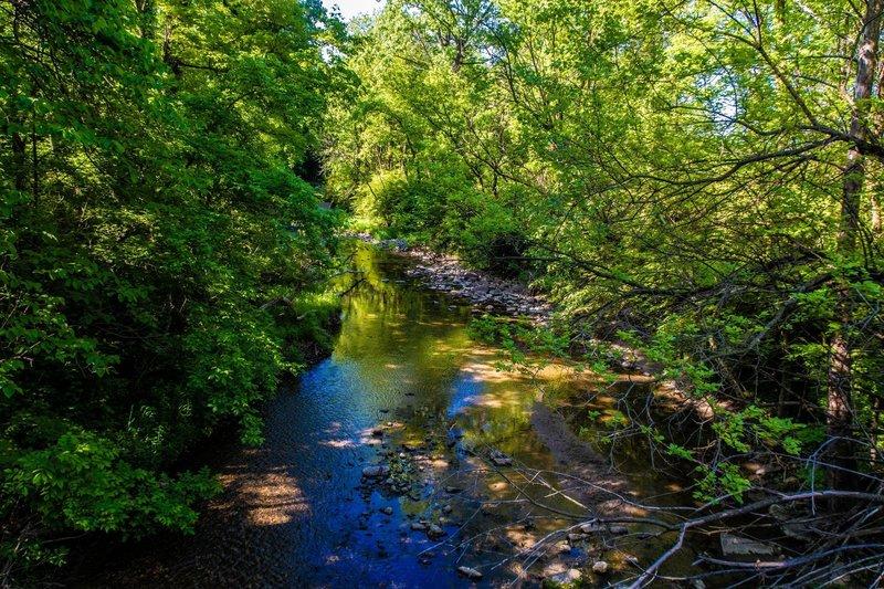 Crossing Burnett's Creek