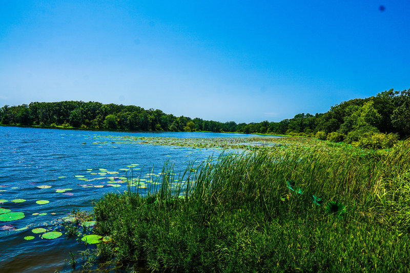 Coffee Mill Lake lies peacefully and vacant within the boundary of the National Grassland.
