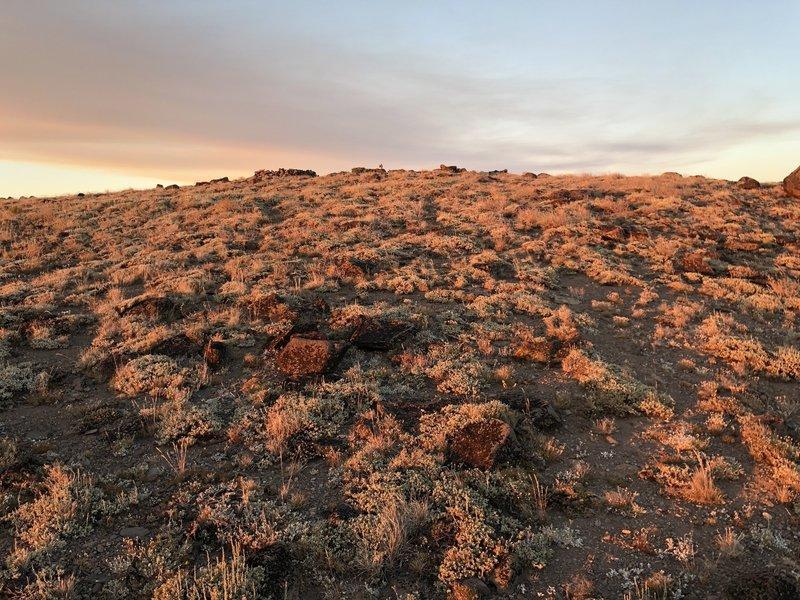 Sunset on Mount Lola