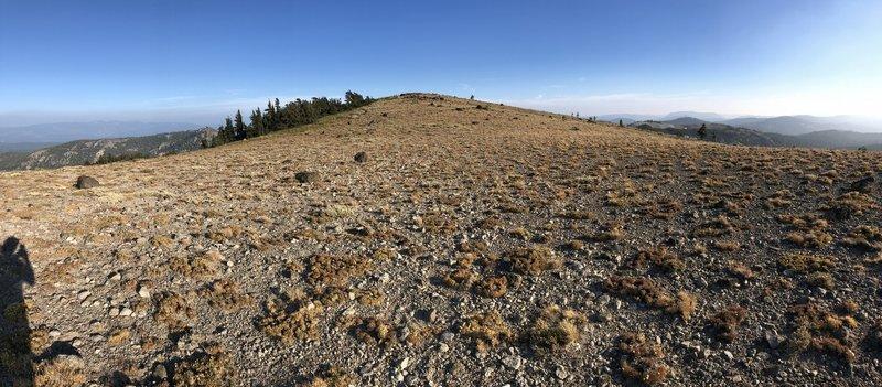 Mount Lola Summit Panorama