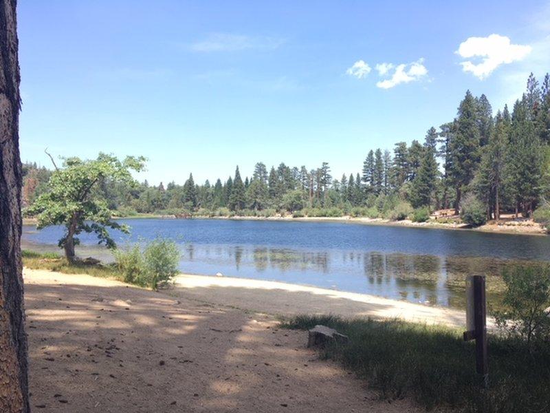 Easy scenic walk around the lake