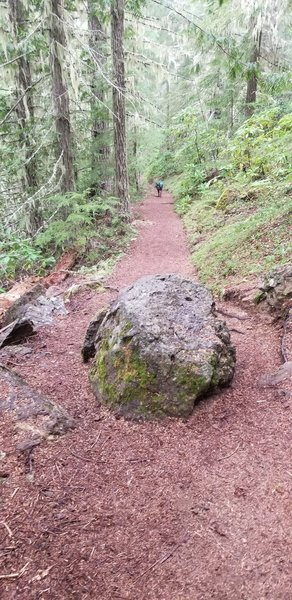 There are 2 small boulders on the trail, this is one.  It's only an issue if you're a cyclist or on horseback.