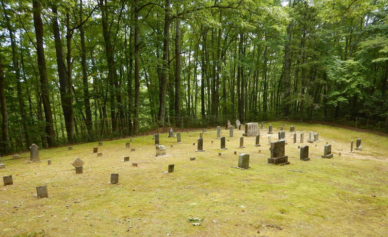 Hannah Cemetary is not far up from intersection with Little Cataloochee trail.