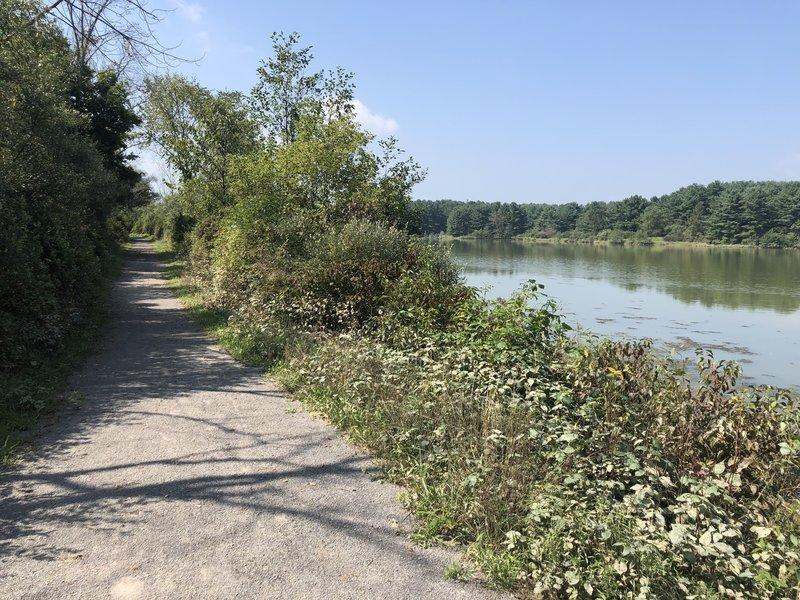 Trail following the lake