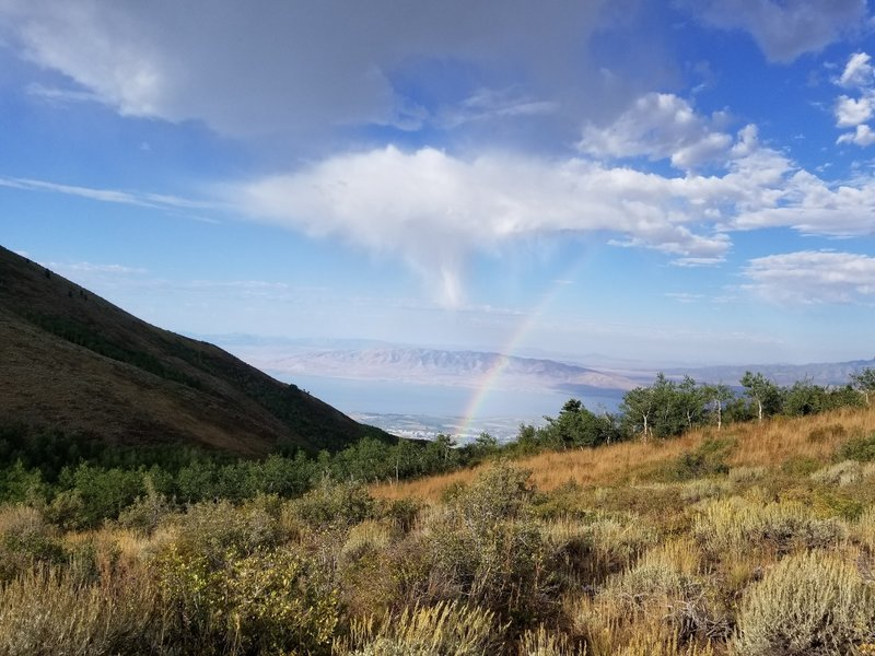 Looking into Utah Valley from Mahogany trail. Rainbow are always good.