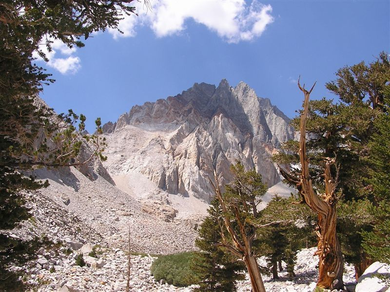 Split Mountain from the approach trail, a stunning face of the peak even in this low res old pic.