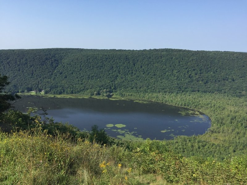 Labrador Pond from overlook.