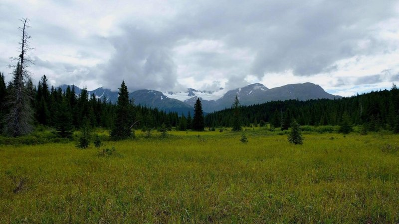 Beautiful meadow looking back to Russian Lakes Trail