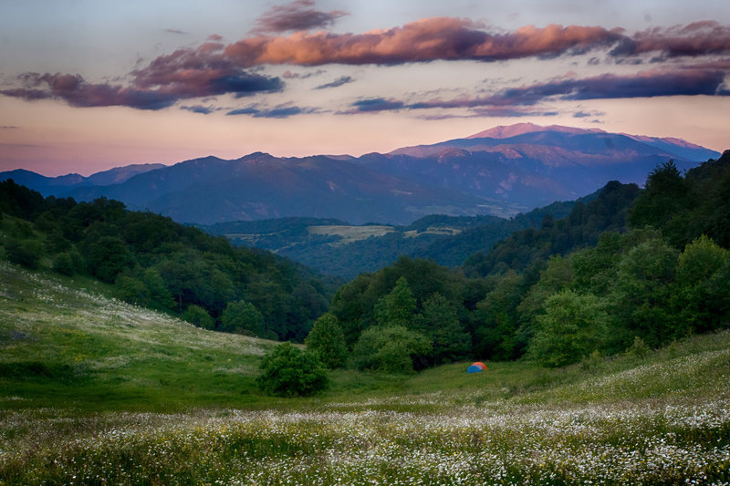 Wild camping at sunset in 'Gyolort' wildflower meadow in the south of Dilijan National Park.