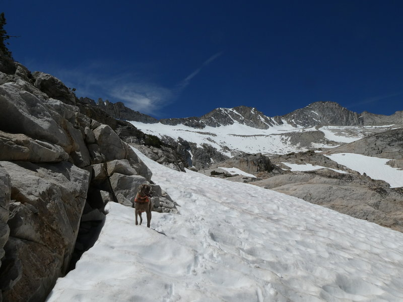 Heading up through the snow to the second of the Conness Lakes on June 20, 2018.