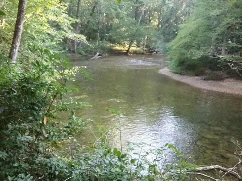 View of Davidson River