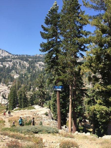 Ski run in summertime - looking down Oregon Trail