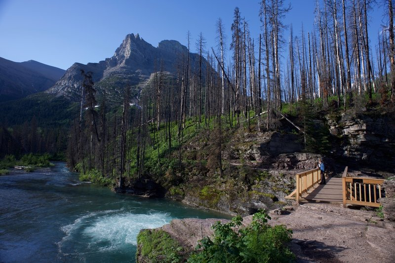 The trail as it crosses over St. Mary River.  There are beautiful views of the mountains through the burnt trees.