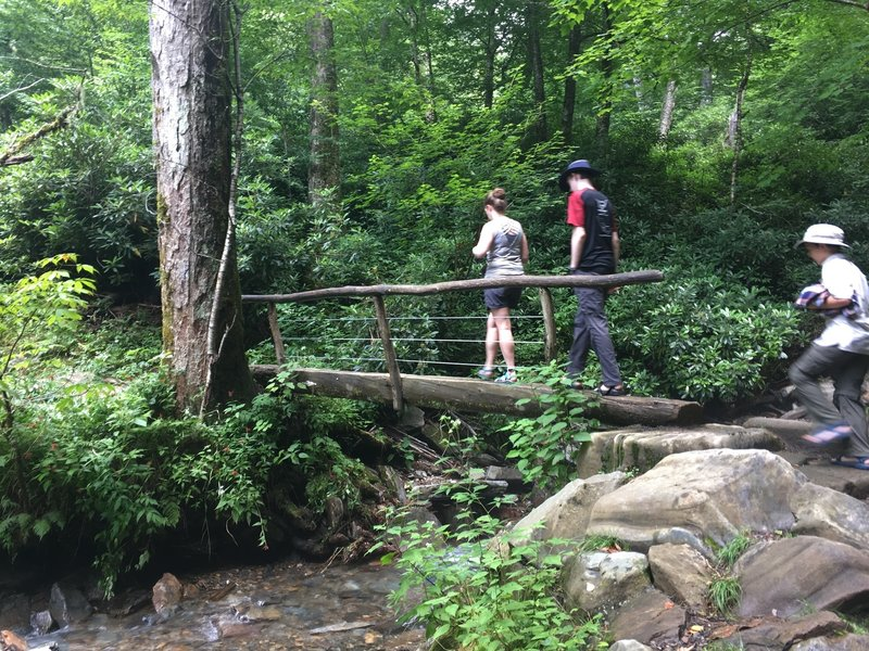 A bridge over a creek on the way to the trail.