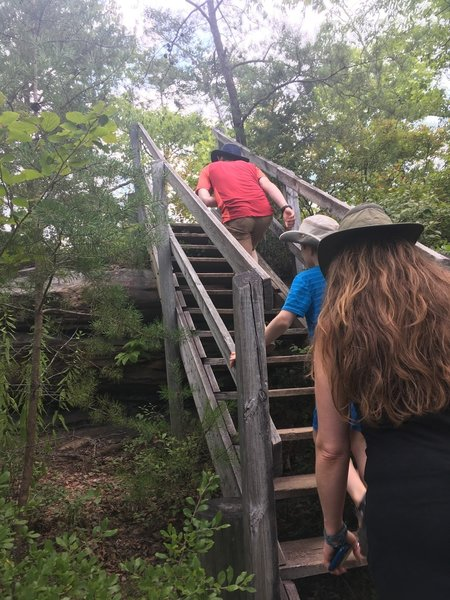 A small set of stairs near the beginning of the trail.