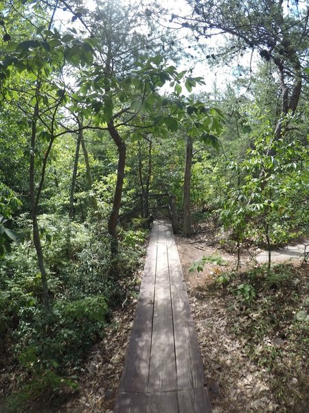 A board walk along part of the trail.