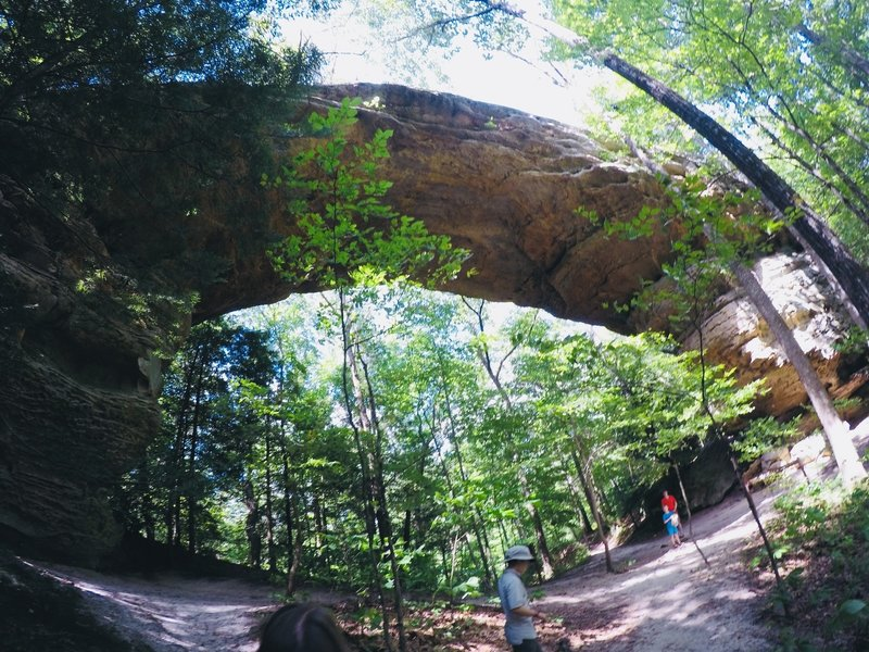One of the Twin Arches looming above the trail.