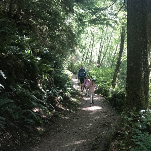 Kid friendly trail