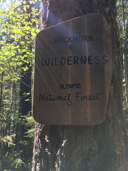 A welcome sign for the Buckhorn Wilderness.
