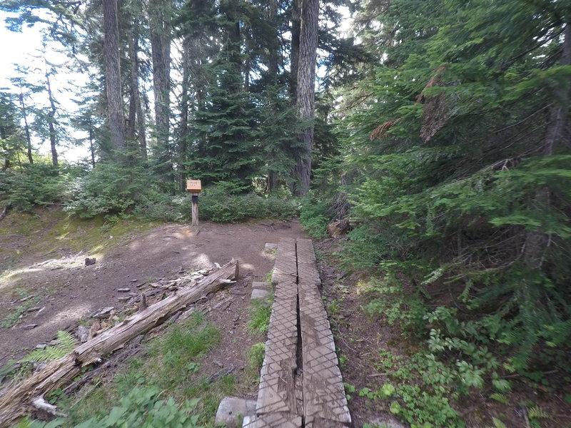 A small boardwalk along the trail.