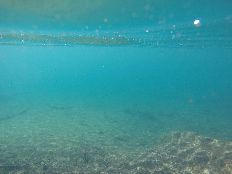 Under Blue Lake.