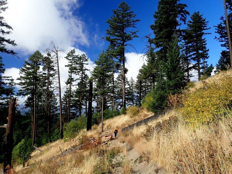 Descending toward the Greenstone Trailhead