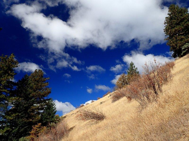 Open slopes above the Grub Gulch Trailhead