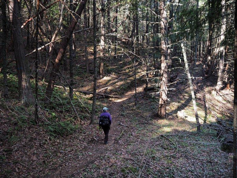 Along the Atsahu Trail