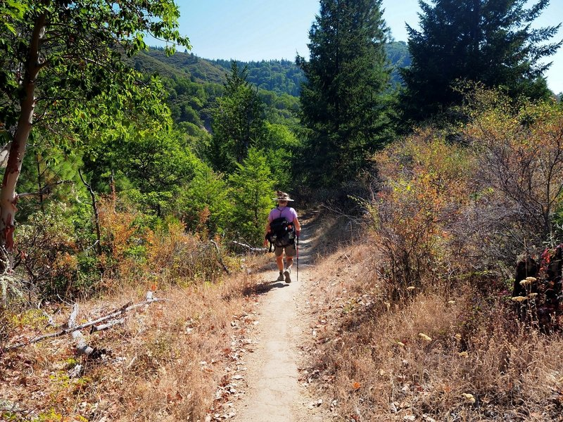 Along the Naversen Family Trail
