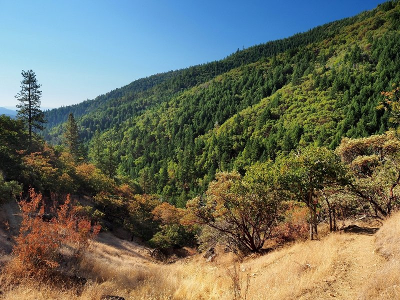 A view from the Siskiyou Trail