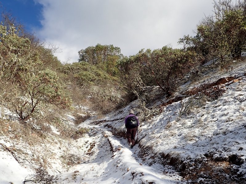 Ascending the Pipsissewa Trail in winter