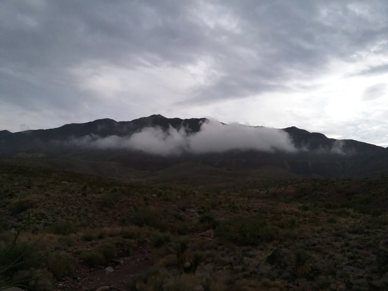 Looking east from the trail on a rainy morning