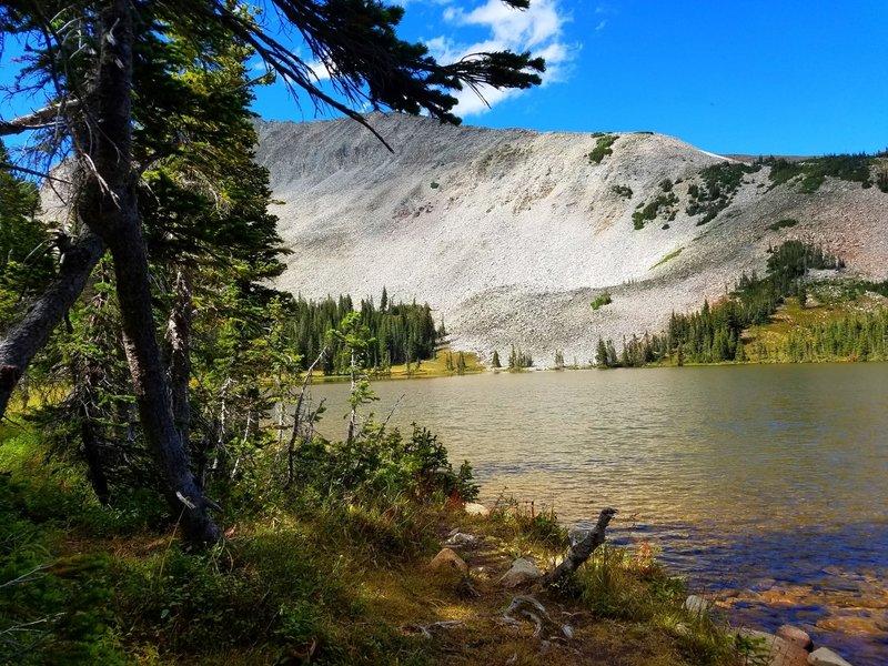 Shore of Mitchell Lake
