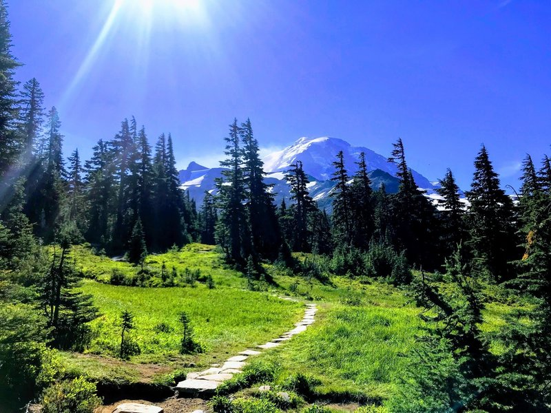 View of Mt Rainier from Spray Park