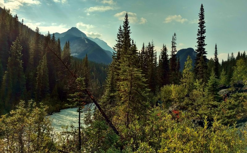 The Blaeberry River below, with rugged mountains beyond, seen looking downstream (southeast) from a high spot on the David Thompson Heritage Trail.