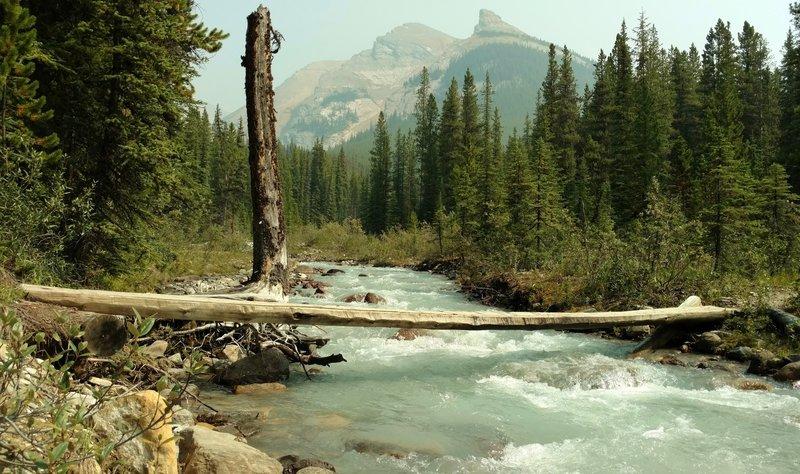 Poboktan Pass Trail crosses a swift flowing side creek that flows into Poboktan Creek, near the Poboktan Trail Camp.