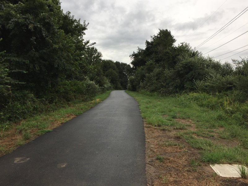 A paved section of the Jack A. Markell Trail