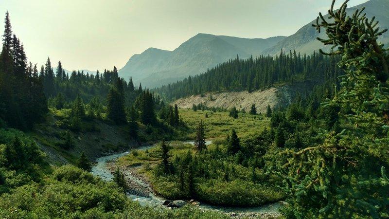 Poboktan Creek runs through the mountain meadows below Poboktan Pass Trail.