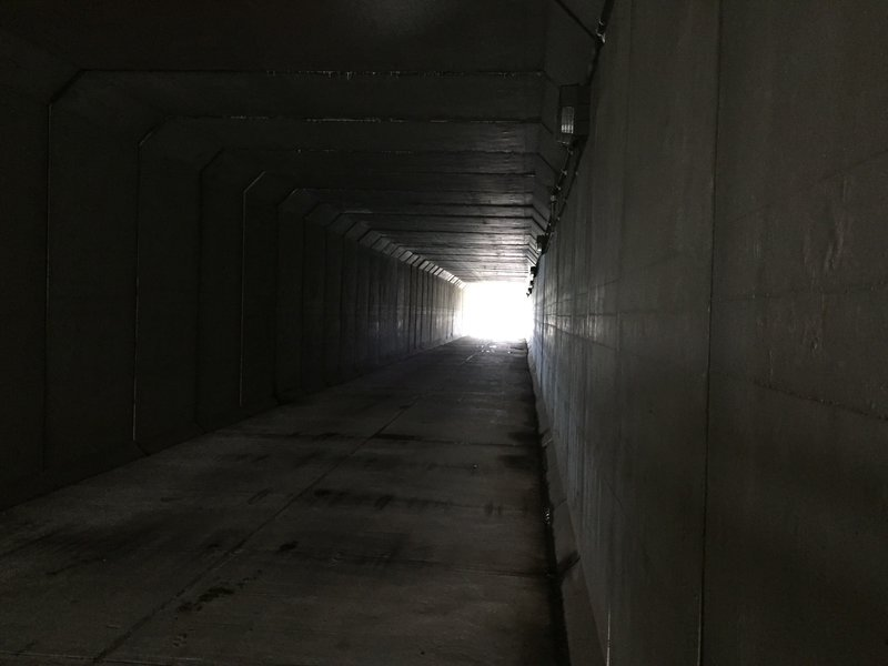 Walking through this trunnel is part of the trail.